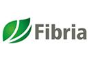 Fibria - Papel e Celulose